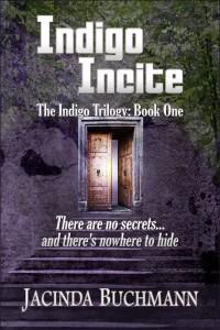 Indigo Incite Twitter (2)